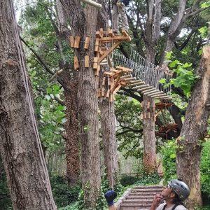 Arborismo en Villavicencio